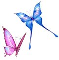 Bright colorful butterflies isolated illustration white background Stock Photos