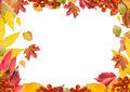 Bright, colorful collage of autumn leaves, for the frame, horizontal.
