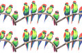 Bright colorful cute beautiful jungle tropical yellow and green parrots on a branch