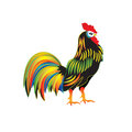 Bright colorful rooster isolated on white background abstract art modern vector