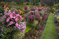 Bright & Colourful Garden Royalty Free Stock Photo