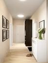 Bright and cozy hall interior design