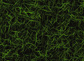 Bright curled lush green grass backgrounds Royalty Free Stock Photo