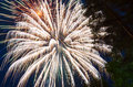 Bright fireworks against the dark blue sky and trees Royalty Free Stock Photo