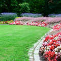 Bright flower bed and green grass in the summer park Royalty Free Stock Image