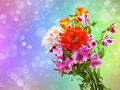 Bright flower bouquet Stock Image