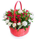 Bright flower bouquet in basket Royalty Free Stock Photos