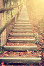 Bright Foliage on Vintage Stairway Royalty Free Stock Photo