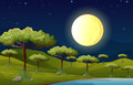 A bright full moon lighting the forest illustration of Royalty Free Stock Photography