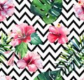 Bright green herbal tropical hawaii floral summer pattern of a tropic palm leaves and tropic pink red violet blue flowers