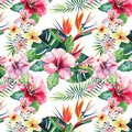 Bright green herbal tropical wonderful hawaii floral summer pattern of a tropic palm leaves and tropic pink red violet blue flower
