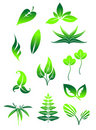 Bright green leaves symbols Royalty Free Stock Image