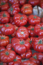 Bright juicy ripe tomatoes Royalty Free Stock Photo
