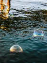 Soap bubbles on the water surface Royalty Free Stock Photo