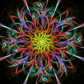 Bright multicolored fractal flower