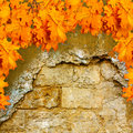 Bright orange autumn leaves on the background of an old brick wall Royalty Free Stock Photos
