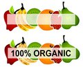 Bright Organic Food Labels 2 Royalty Free Stock Images