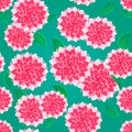 Bright Pink Flower Seamless Pattern Stock Photography