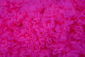Bright Pink Texture Background