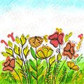 Bright reeting card with field of flowers hand drawn greeting eps Stock Images