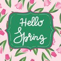 Bright spring background with flower tulips and hello spring tex