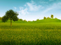 Bright summer afternoon natural backgrounds Stock Image