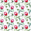 Bright tender cute spring floral herbal peonies with green leaves pattern watercolor hand illustration