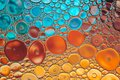 Bright water oil bubble macro abstract background. Royalty Free Stock Photo