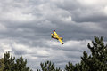 Bright Yellow Firefighter Plane in a Cloudy Sky Royalty Free Stock Image