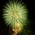 Brightly colorful fireworks  in the night sky Royalty Free Stock Images