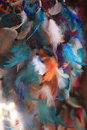 Brightly coloured ornamental bird feathers background of soft fluffy in white blue and orange used as a decoration in interior Royalty Free Stock Photos