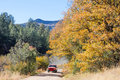 Brilliant Fall colors at 4th of July Canyon New Mexico Royalty Free Stock Photo