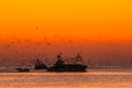 Bringing in the catch fishing boats at dawn returning with nights Royalty Free Stock Image