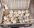Brinquedos antigos da árvore do white christmas na mala de viagem antiga Foto de Stock