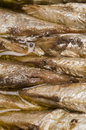 brisling sardines from norway Royalty Free Stock Photo