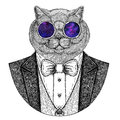 Brithish noble cat Hipster animal Hand drawn image for tattoo, emblem, badge, logo, patch, t-shirt