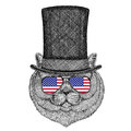 Brithish noble cat Male wearing cylinder top hat and glasses with usa flag United states of America flag