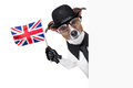 British dog banner with black bowler hat and black suit waving a flag Royalty Free Stock Photo
