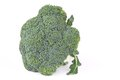 Broccoli against white background brassica oleracea var italica Stock Images