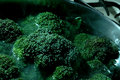 Broccoli cooking Stock Images
