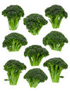 Broccoli Florets Royalty Free Stock Photography