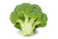 Broccoli fresh on white background Royalty Free Stock Photos