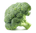 Broccoli head side isolated on white background 2 Royalty Free Stock Photo