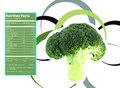 Broccoli nutrition facts creative design for with label Royalty Free Stock Photo