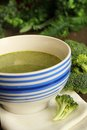 Brocoli soup Stock Photography