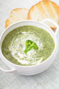 Brocolli cream soup Royalty Free Stock Photo