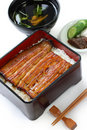 Broiled eel on rice,unaju, japanese unagi cuisine Royalty Free Stock Photo