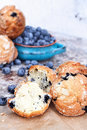 Broken blueberry muffins delicious homemade with fresh blueberries in the background Royalty Free Stock Photography