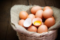 Broken chicken eggs and egg yolk Royalty Free Stock Photo