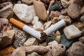 Broken cigarette Royalty Free Stock Photo
